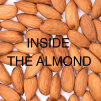 Inside The Almond podcast