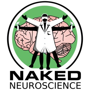 Naked Neuroscience, from the Naked Scientists