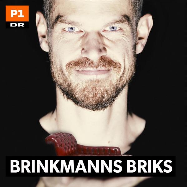 Brinkmanns briks: Tør og kan du leve bæredygtigt? 2019-06-26