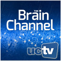 Brain Channel (Video) podcast