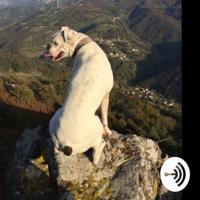 Radio Tolivia podcast
