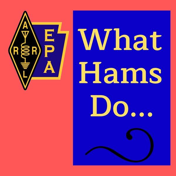 What Hams Do...
