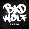 Bad Wolf Radio: A Doctor Who Podcast artwork