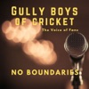 Gully Boys of Cricket artwork