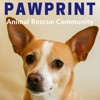 Pawprint | animal rescue podcast for dog, cat, and other animal lovers artwork