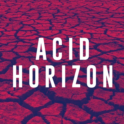 Answers Without Organs: Acid Horizon's Second Q&A Session