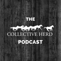 Collective Herd Podcast podcast