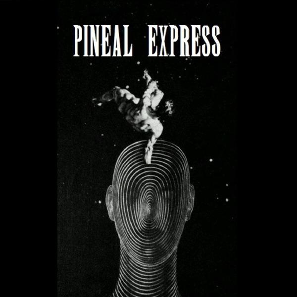 Pineal Express