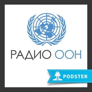 Радио ООН: ежедневная программа