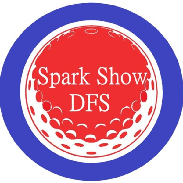 Spark Show DFS