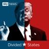 Divided States artwork