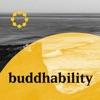 Buddhability artwork