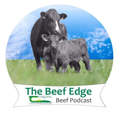 The Beef Edge:Teagasc