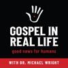 Gospel In Real Life artwork