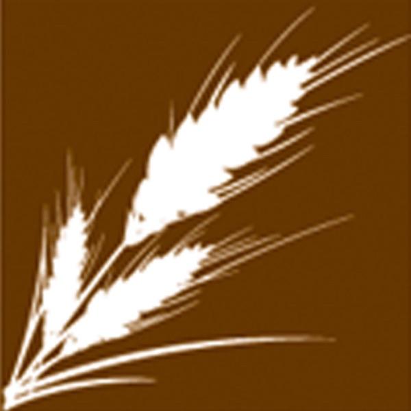Harvest Evangelism