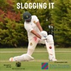 Slogging It artwork