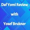 Daf Yomi Review  artwork