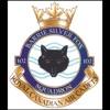 102 Squadron artwork