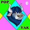 Pop Yak  artwork