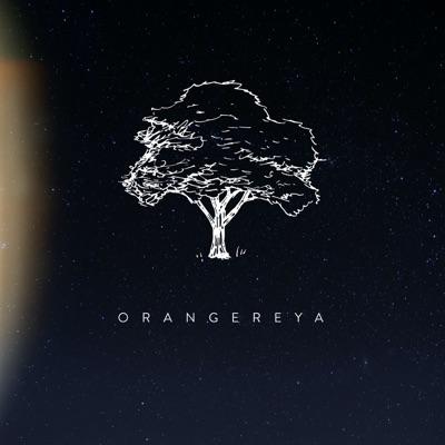 Orangereya:Василий Дворцов
