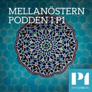 Mellanösternpodden i P1