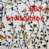 66% Inviisiiblee artwork