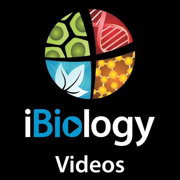 iBiology Videos Artwork