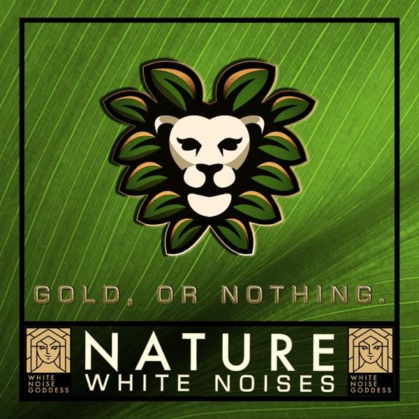 Nature Sounds   White Noise   ASMR & Relaxation Artwork