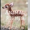 Animal rights artwork