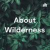 About Wilderness artwork