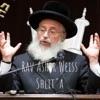 """Rav Asher Weiss Shlit""""a artwork"""