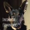 Incognita (Phenomena, Folklore, Hauntings, Killers, UFO's and More) artwork