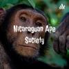 Nicaraguan Ape Society artwork