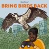 Bring Birds Back artwork