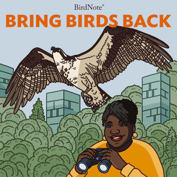 Bring Birds Back