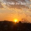 Life Under the Son artwork
