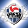 Above The Net artwork