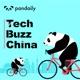 Tech Buzz China 英文科技评论