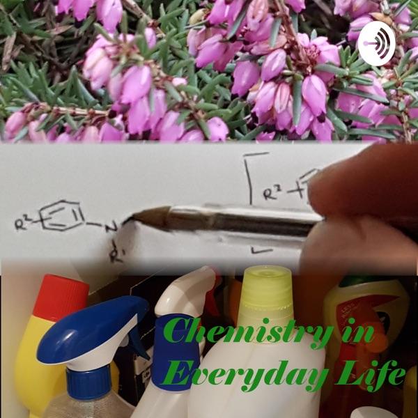 Chemistry in Everyday Life Artwork