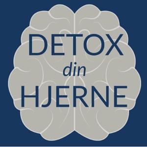Detox Din Hjerne