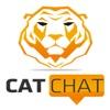 Cat Chat - Big Cat Rescue artwork
