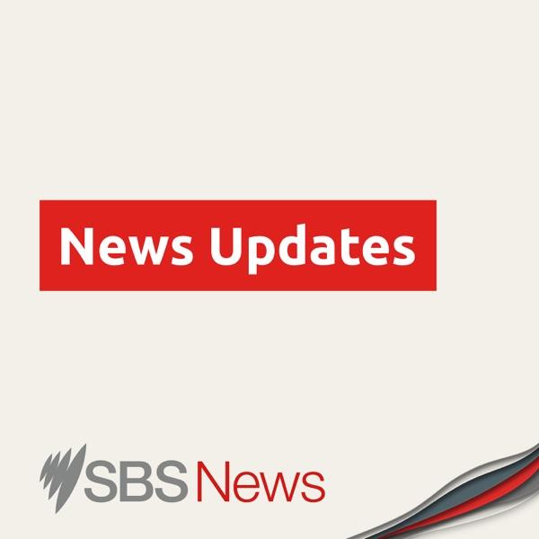 SBS News Updates Artwork