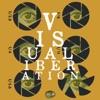 Visual Liberation artwork