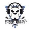 Bristol Pitbulls Official Podcast artwork