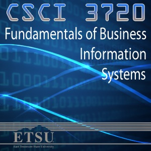 Fundamentals of Business Information Systems - Summer