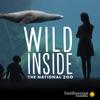 Wild Inside The National Zoo artwork