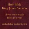 ABP - King James Version - Straight Through - January Start - audiobiblepodcast.com