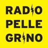 Radio Pellegrino by Sound Pellegrino artwork