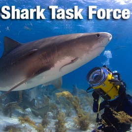 Shark Task Force on Apple Podcasts