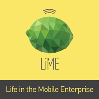Life in the Mobile Enterprise podcast